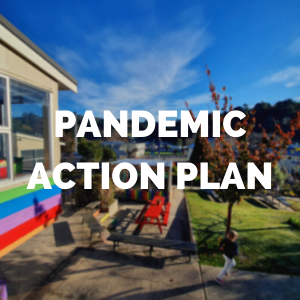 NEVNS Pandemic Action Plan